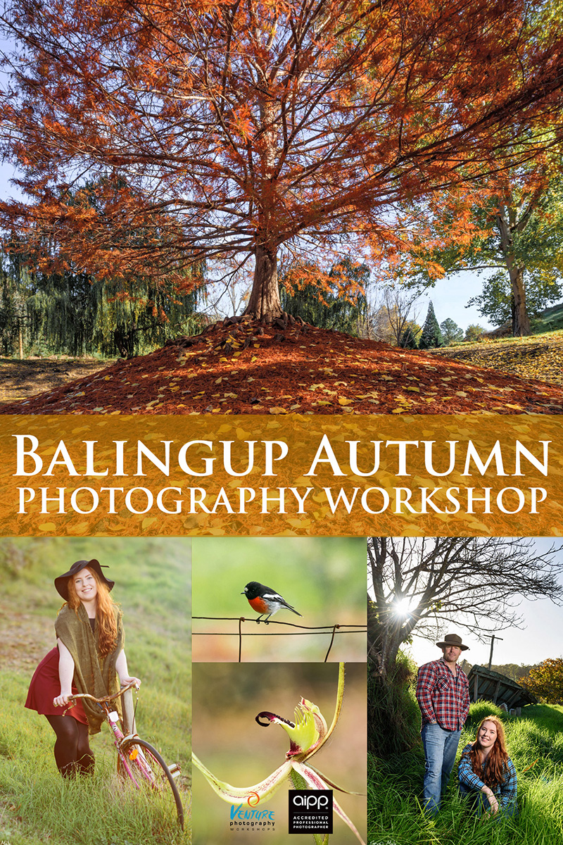 Balingup Autumn Photography Workshop