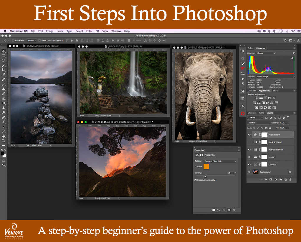 First Steps into Photoshop