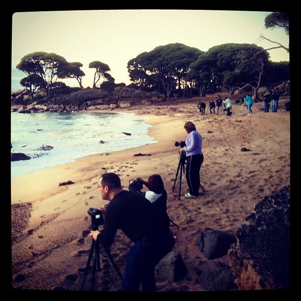 Dawn shoot at Shelley Cove