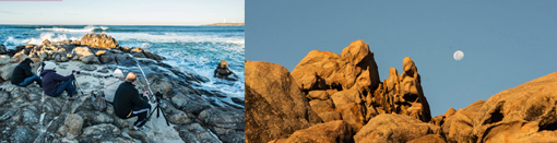 Cape Naturaliste Photo Safari