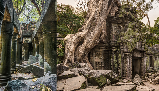 Beng Melea and Ta Prohm images