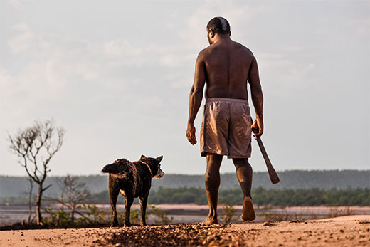 Nyinyikay Yolngu Man walking on mangrove flats with his dog