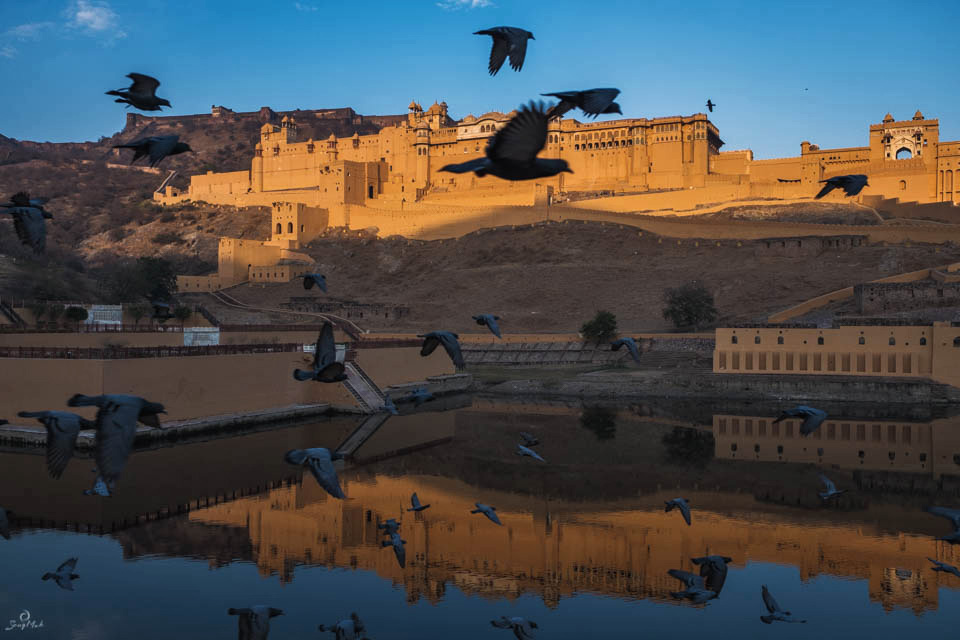 Amer Fort and Lake Maota