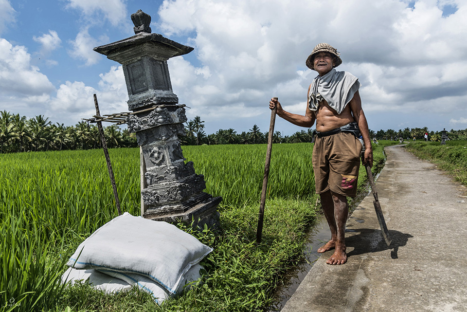Old farm worker in Bali