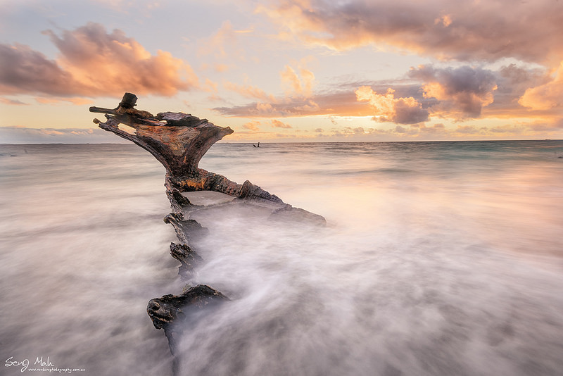 Wreck of the SS Wyola, Coogee