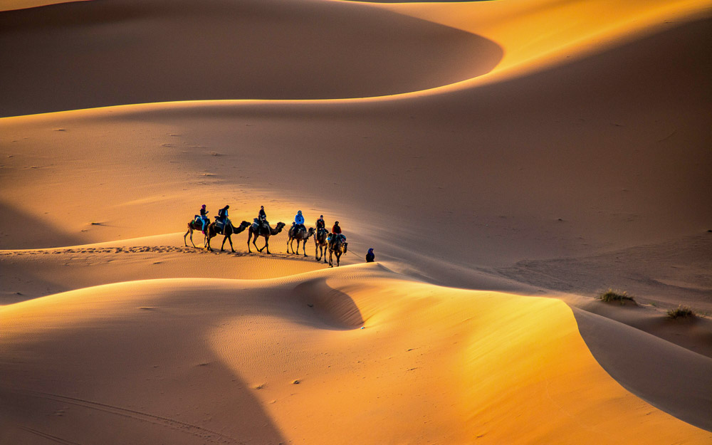 Sahara Desert Scene with camels and riders