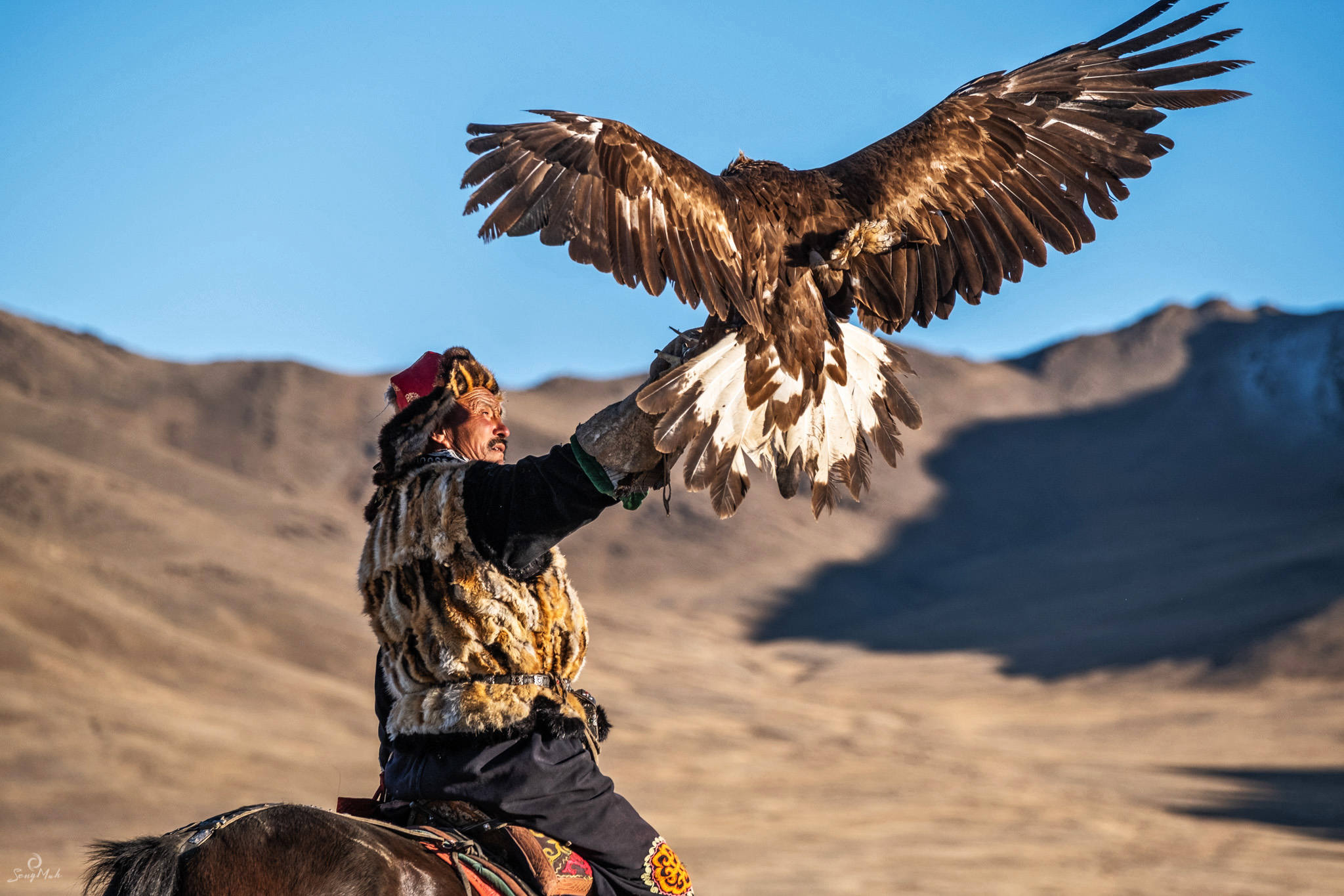 Eagle hunter with returning eagle