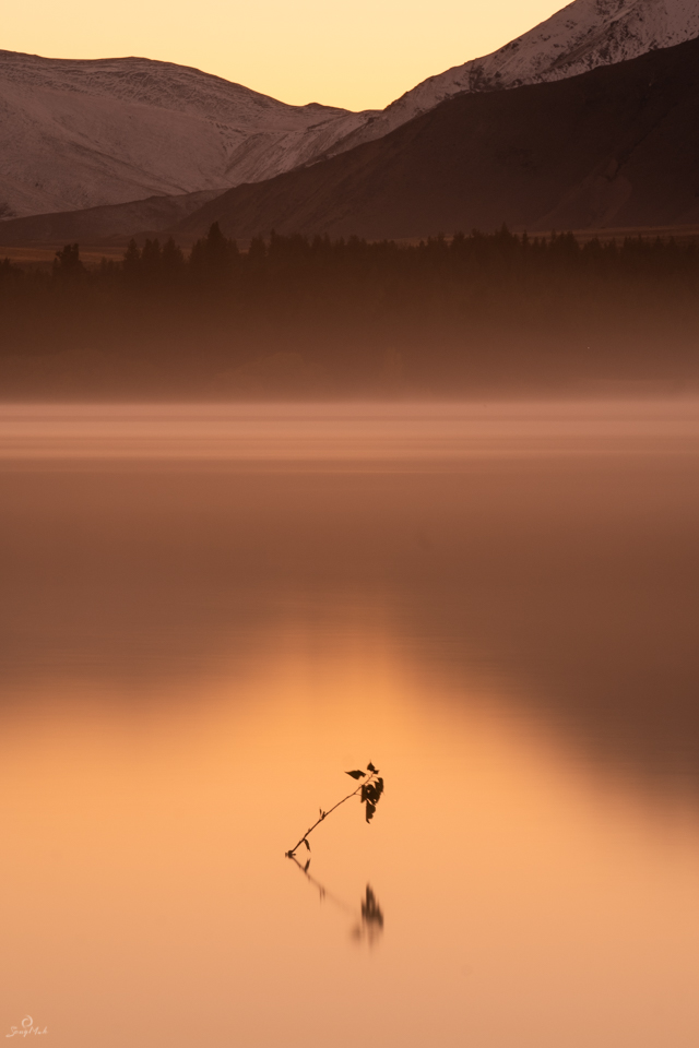 Lake Tekapo Gold Light