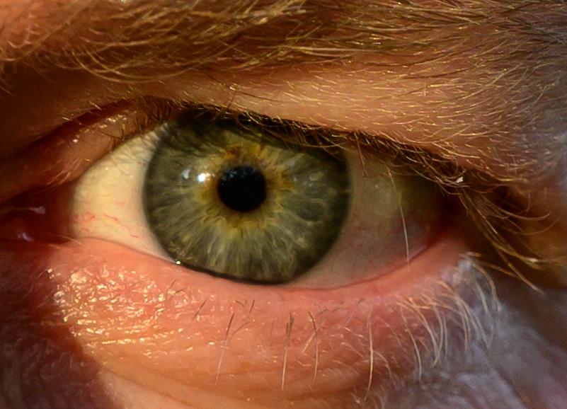 100 per cent crop of an eye
