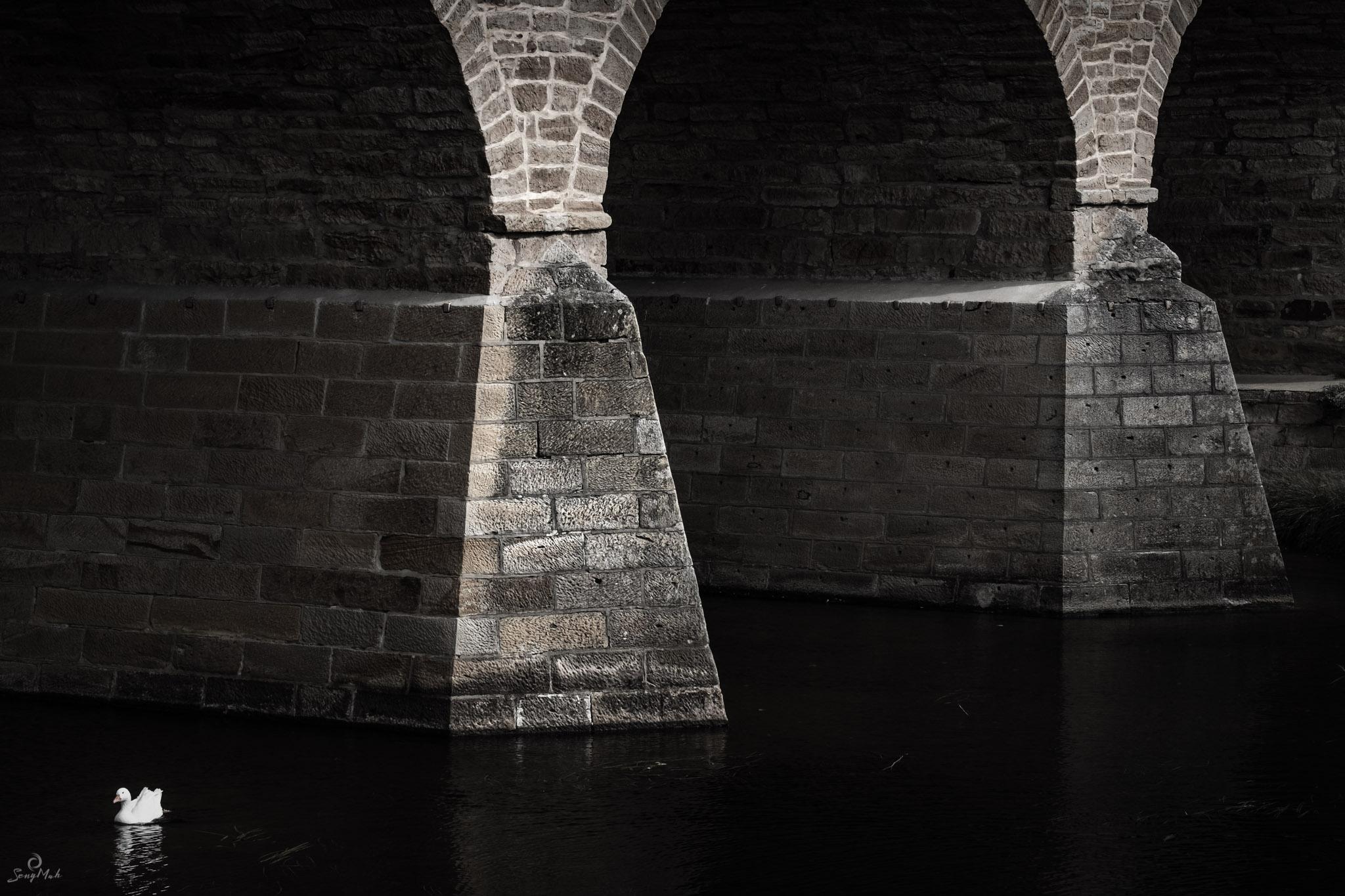 Richmond Bridge detail