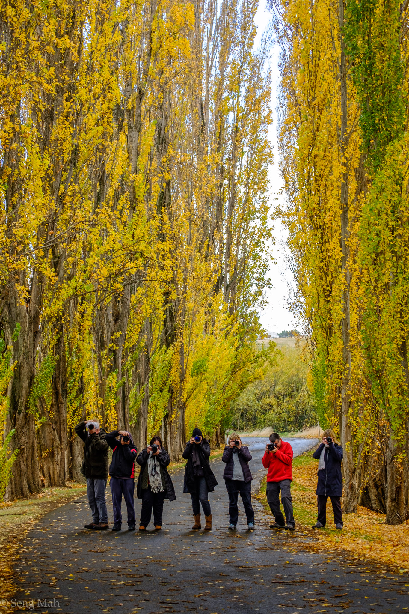 Autumn photographers