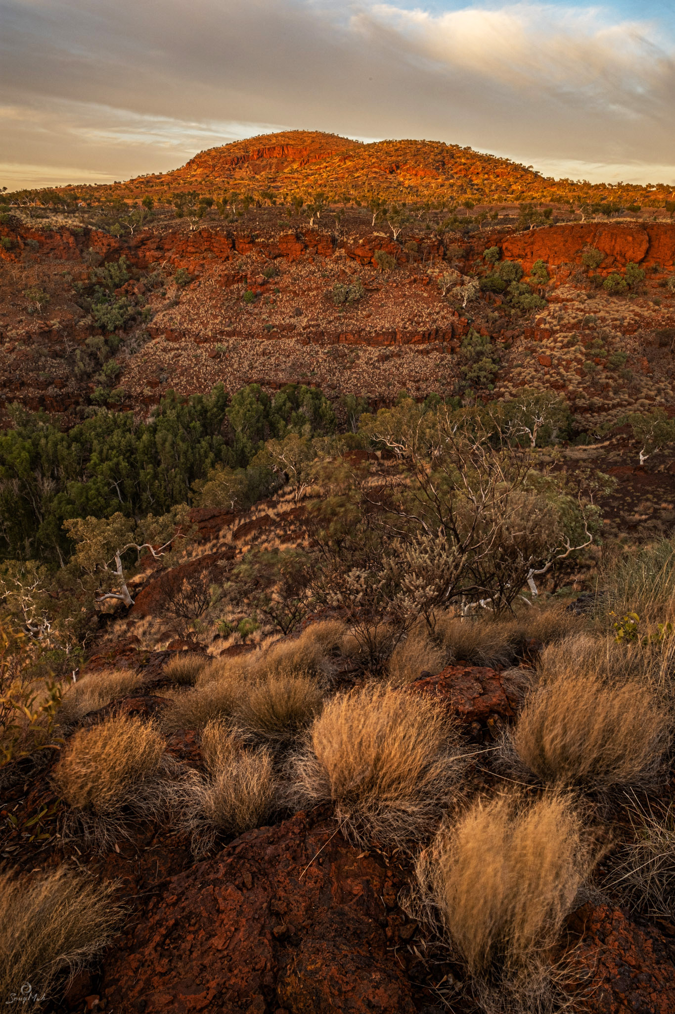 Dales Gorge Lookout