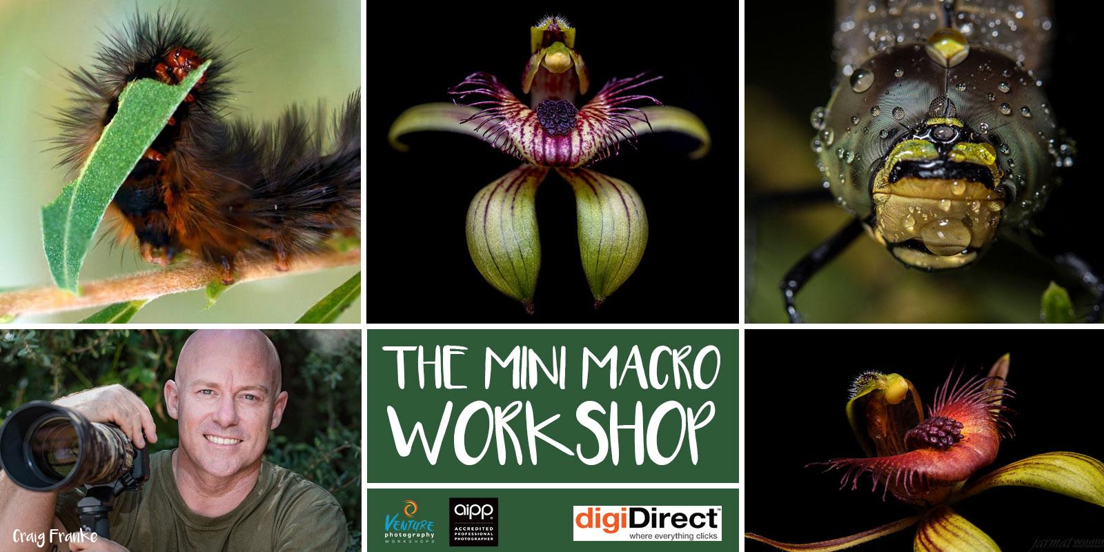 The Mini Macro Workshop