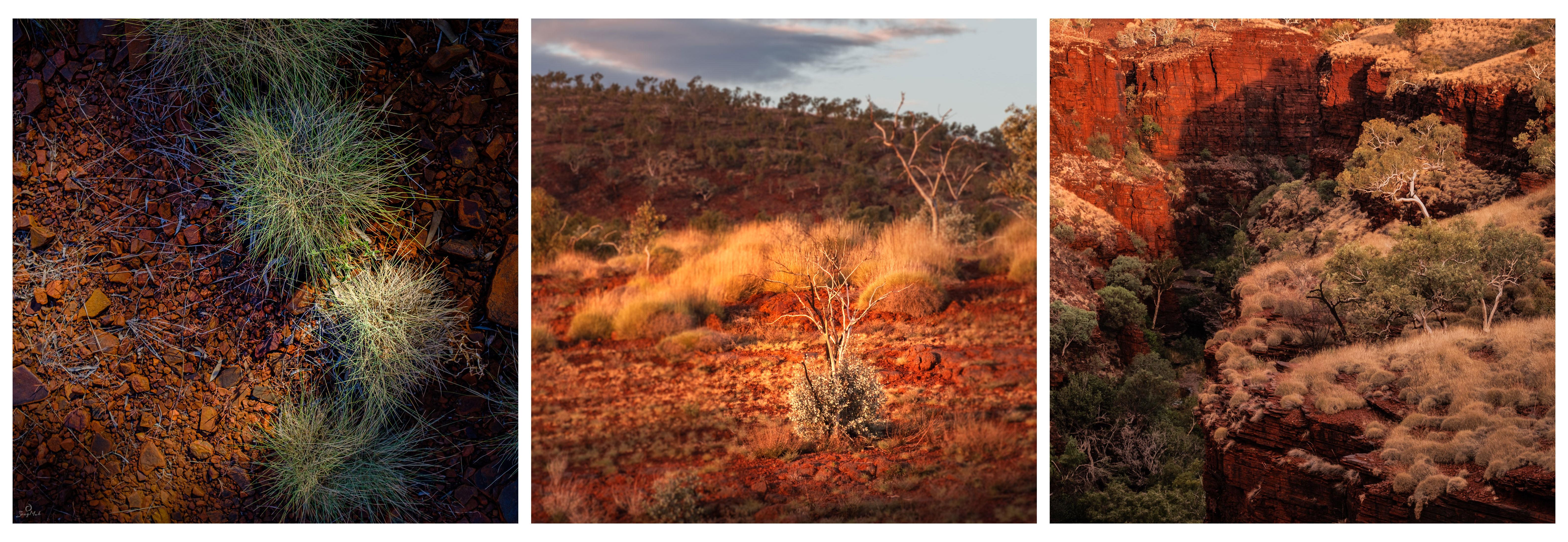 Karijini triptych landscapes
