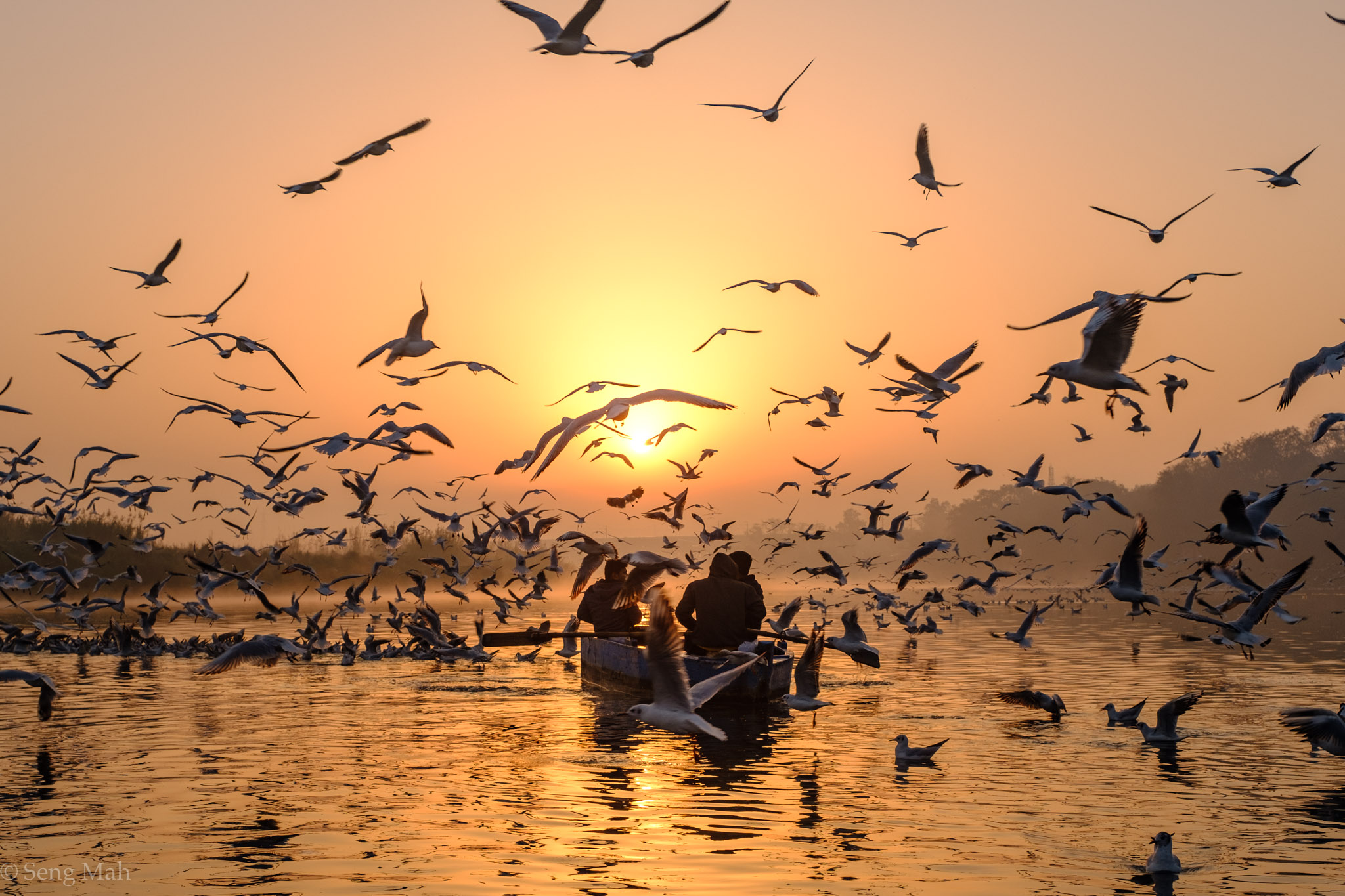 Sunrise, Yamuna River