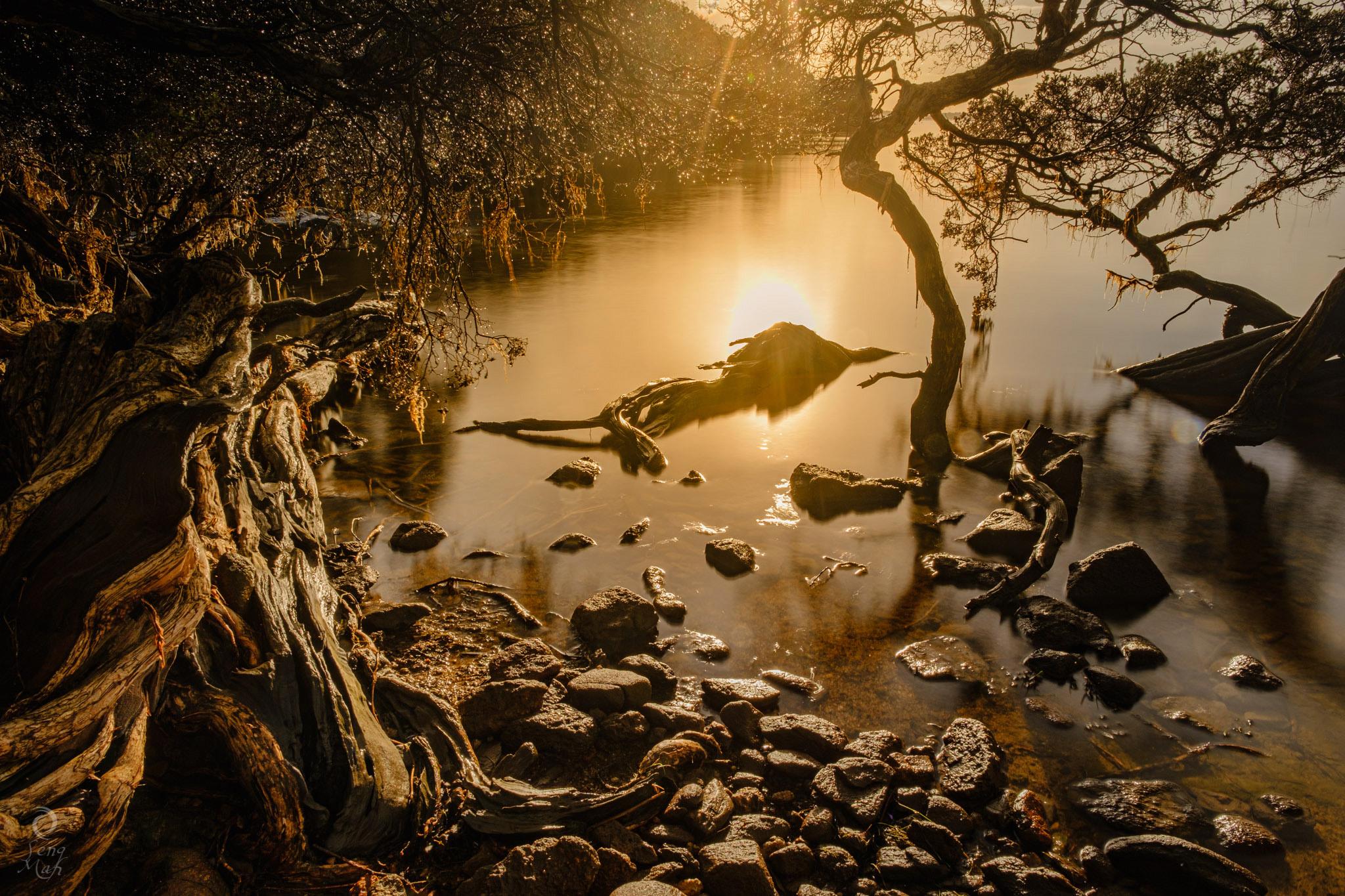 Denmark Inlet sunrise