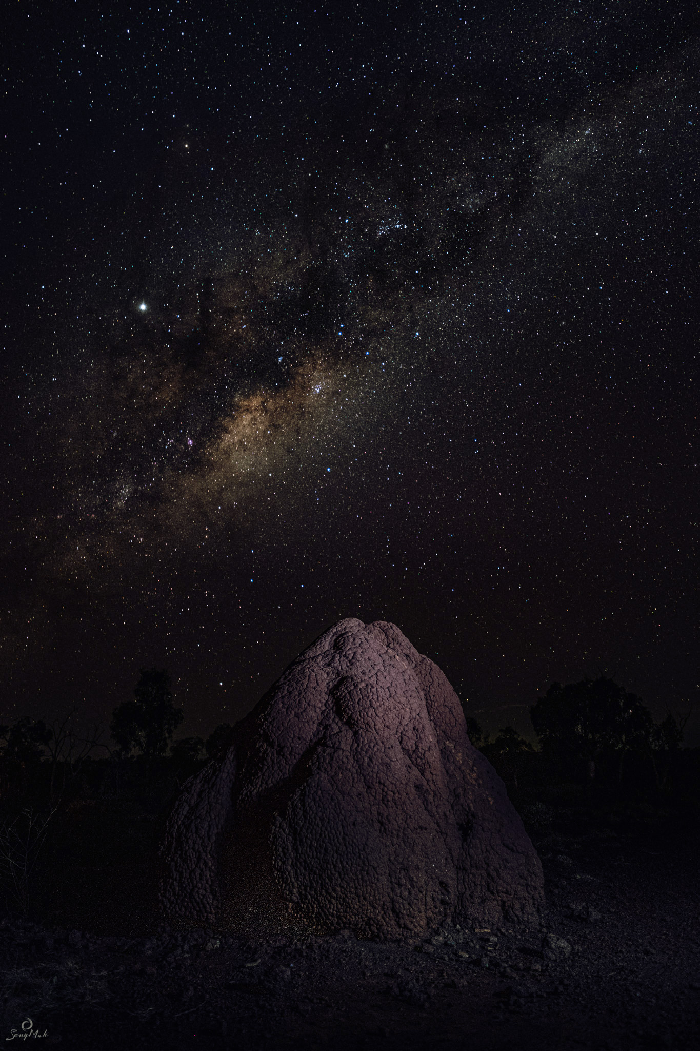 Ant mound Milky Way