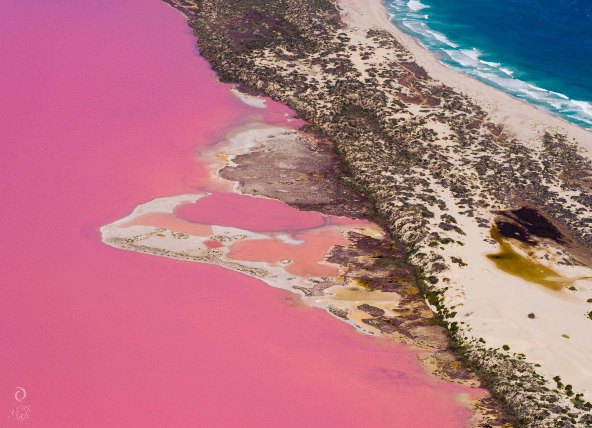 Pink Lake Aerial