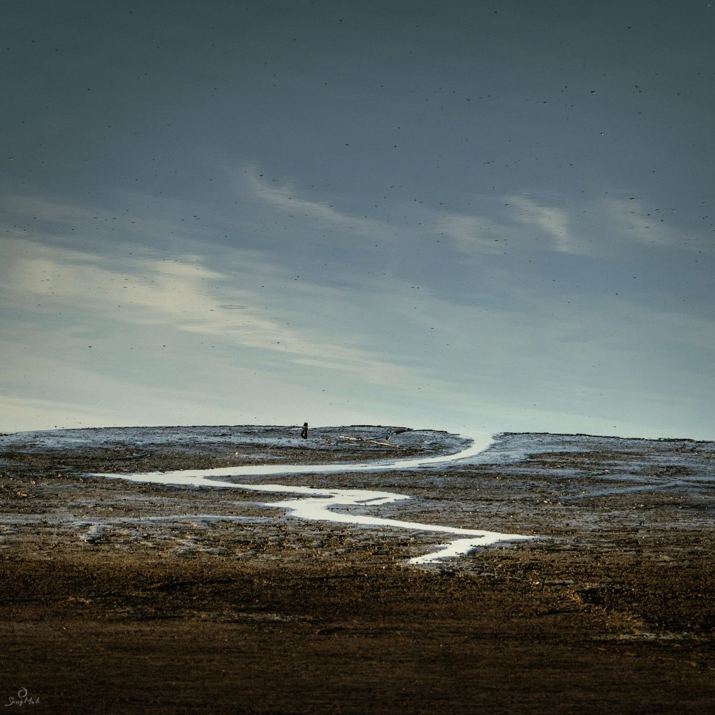 A cryptic image showing a winding stream through mudflats leading into a sky, but this could be an optical trick.