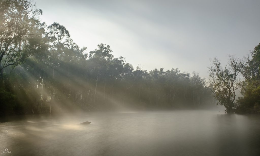 A misty morning on the Murray River in Dwellingup with shafts of sunlight filtering through trees and falling on the river.