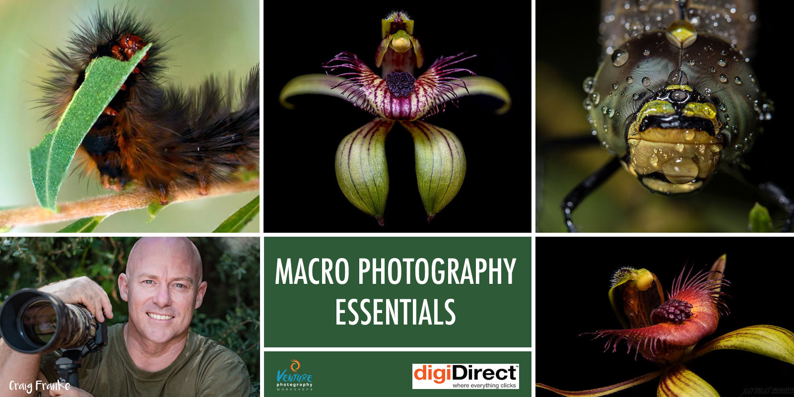 Macro Photography Essentials Banner