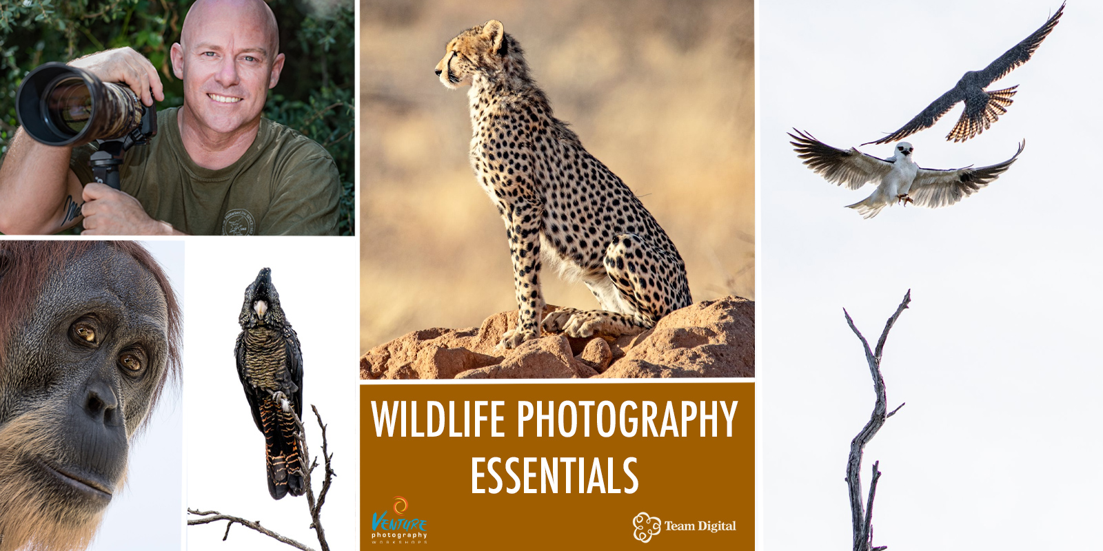 Wildlife Photography Essentials