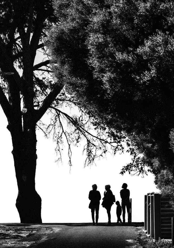 Silhouettes at Rottnest
